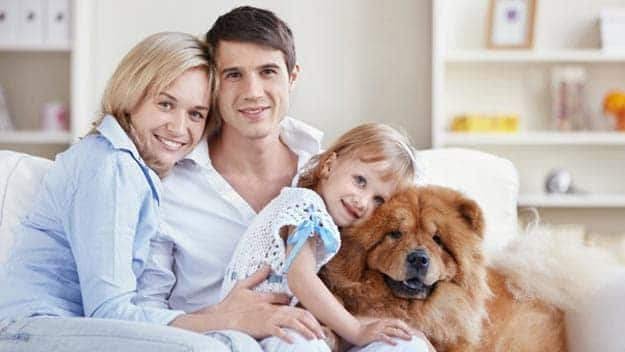 Wills & Trusts dog-young-family Direct Wills South Harefield